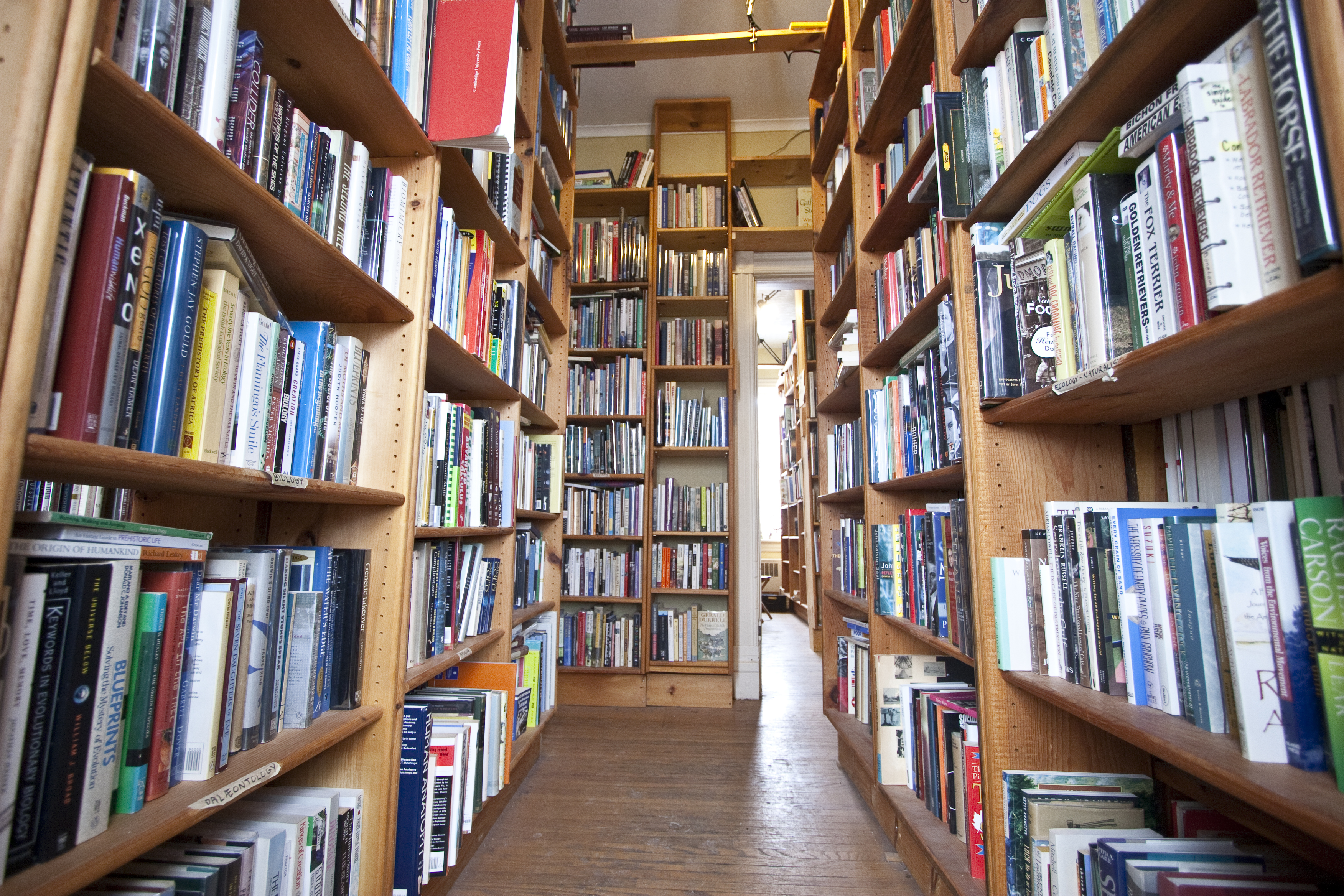 Old Goat Books in Uptown Waterloo (photo by Kate Turner)