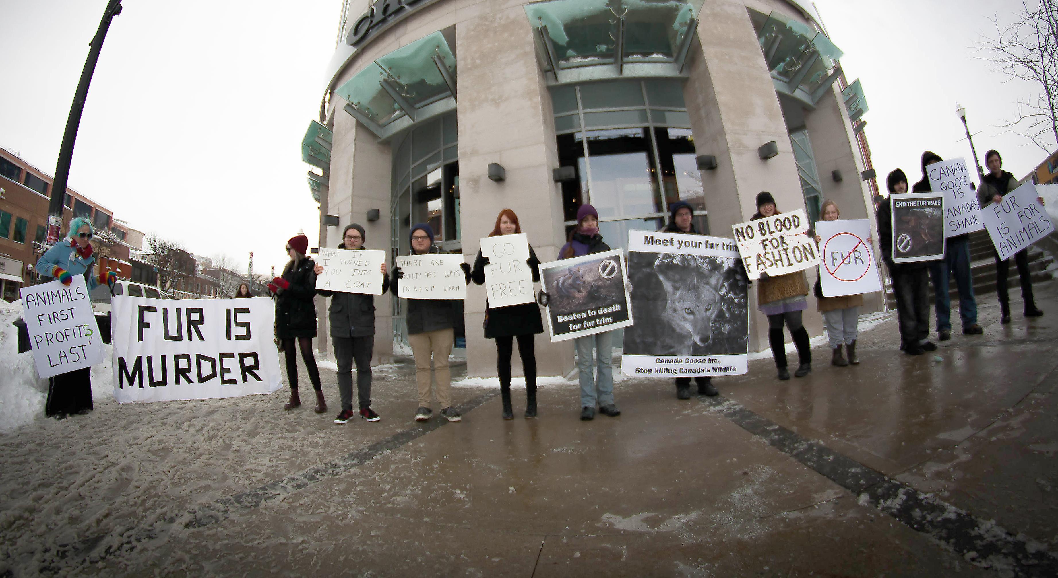 canada goose jacket boycott